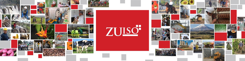 ZUISO OK BANNER FBK